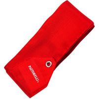 купить  PASTORELLI monochromatic ribbon-00090